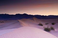 Dunes à l'aube Photographie stock libre de droits