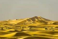 Dunes éloignées Photographie stock