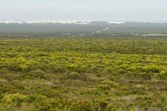 Dunes éloignées de désert en réserve naturelle de De hoop Photos stock