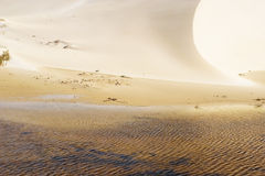 Free Dunes 1 Royalty Free Stock Photography - 224817