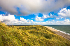 Dunes Images stock