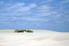 Dunes royalty free stock photo