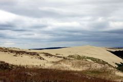 Dunes. On the Curonian Spit Stock Photography