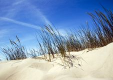 Dunes Royalty Free Stock Photo