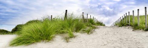 Dunes. Sand dune at the beach in scheveningen netherlands Royalty Free Stock Photos