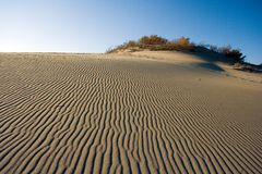 Dunes. Dune in Nida, Lithuania Stock Images