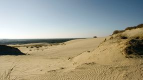 Dunes. In Nida, Lithuania Royalty Free Stock Photography