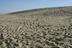 Dunes. In Lithuania royalty free stock image