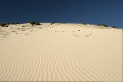 Dunes. Bright white dunes of El Jable Stock Photo