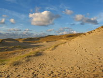 Dunes. In Neringa royalty free stock photography