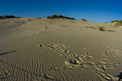 Dunes. Polish dunes in Leba. Nice landscape with strong colors Stock Images