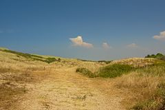 Dune landscape along the Opal North Sea coast. Dunes along the Opal North Sea coast, Nord pas de Calais, France, on a sunny day with clear blue sky stock photo