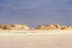 Dunes on Amrum Royalty Free Stock Images