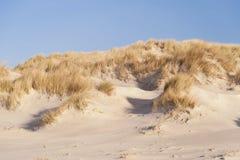Dunes on Amrum Royalty Free Stock Photo