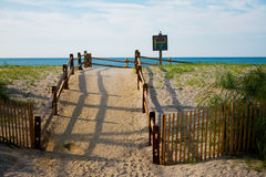 Dunes at Atlantic City, NJ Royalty Free Stock Images