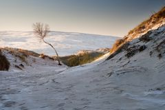 Dunes au paysage de lever de soleil Image libre de droits