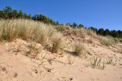 Dunes Baltic Sea coast Stock Photography