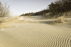 Dunes Baltic seacoast. Landscape of drifted dunes at the Baltic seacoast Palanga Lithuania, wintertime royalty free stock photos