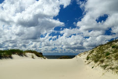 Dunes of the Baltic spit. Kaliningrad region, Russia Royalty Free Stock Image