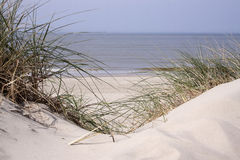 Dunes on the beach Stock Photography