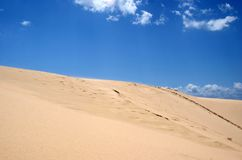 Dunes on the beach Royalty Free Stock Photos