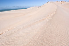Dunes on beach Royalty Free Stock Photos