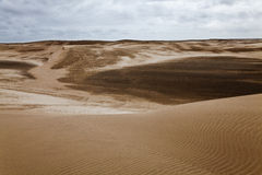 Dunes at the beach near Villa Gesell Stock Photo
