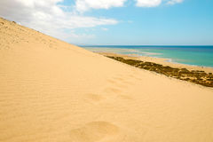 Dunes on the beach Playa de Sotavento on the Canary Island Fuerteventura, Spain. Royalty Free Stock Photo