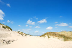 Dunes and beach Royalty Free Stock Image