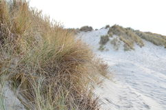 Dunes, beach and sea in Zeeland, Netherlands Stock Photography