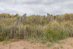 Dunes behind a fence Royalty Free Stock Photography