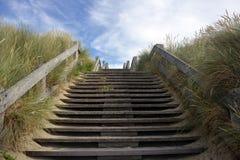 Dunes on the Belgian coast Royalty Free Stock Photo