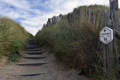 Dunes on the Belgian coast Royalty Free Stock Photography