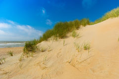 Dunes at Belgian north sea coast against cirrus and stratus clouds and reed grass. Near De Haan, Belgium Stock Image