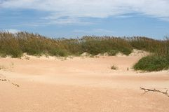 Dunes of Cape Lookout stock photography