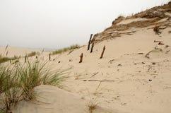 Dunes cloudy landscape Stock Images