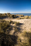 Dunes At The Coast. Dunes stretch out in across the coastline for several miles. This is one of the few regions in Belgium where these dunes are nicely preserved royalty free stock photos