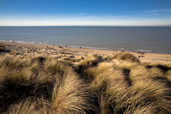 Dunes At The Coast. Dunes stretch out in across the coastline for several miles. This is one of the few regions in Belgium where these dunes are nicely preserved royalty free stock photography