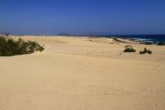 Dunes of Corralejo, Fuerteventura Stock Image