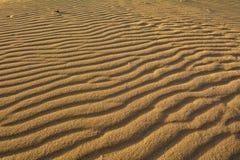Dunes of Corralejo, Fuerteventura, Canary Islands, Spain. Close-up. Royalty Free Stock Photos