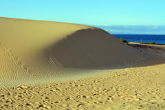 Dunes of Corralejo, Fuerteventura, Canary Islands, Spain. Stock Photography