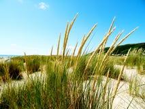 Dunes d'Aberdovey Photo libre de droits