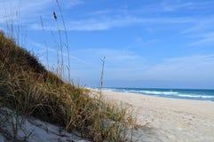 Dunes d'avoine de mer Image libre de droits