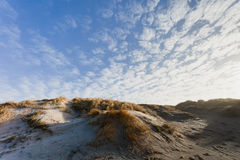 Dunes at the Danish North Sea coast Royalty Free Stock Images