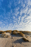 Dunes at the Danish North Sea coast Stock Photos