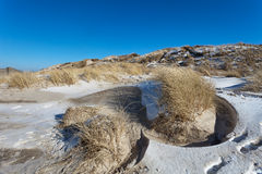 Dunes at the Danish North Sea coast Royalty Free Stock Image