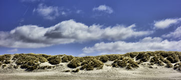 Dunes at the Danish North Sea coast Royalty Free Stock Photo