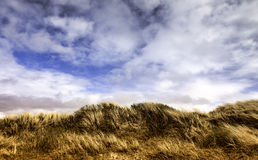 Dunes at the Danish North Sea coast on Fano Royalty Free Stock Images