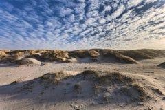 Dunes at the Danish North Sea coast Royalty Free Stock Photo