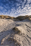 Dunes at the Danish North Sea coast Royalty Free Stock Photos